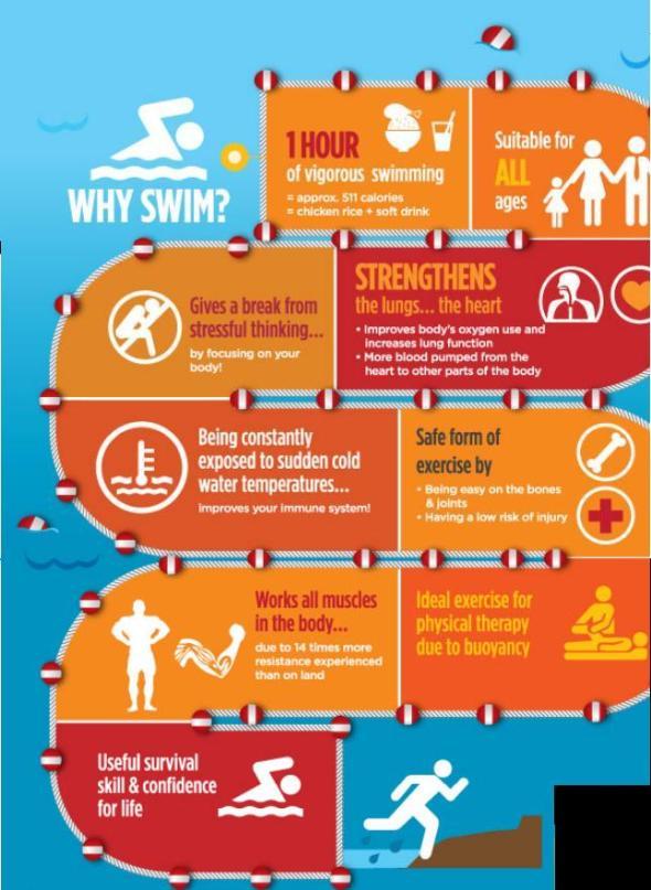 isaacloo swim infographic
